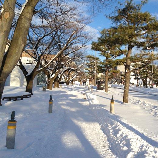 日本の道100選にも選ばれている「官庁街通り」