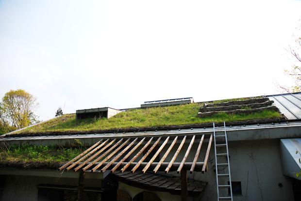 屋根の上に畑や田んぼ
