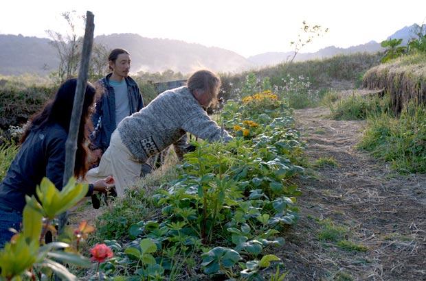 野菜や果物、ハーブなど80種類ほど育てている畑