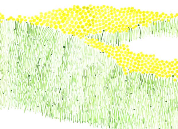 北の大地の 自然から生まれたテキスタイル。 北海道の「点と線 模様製作所」