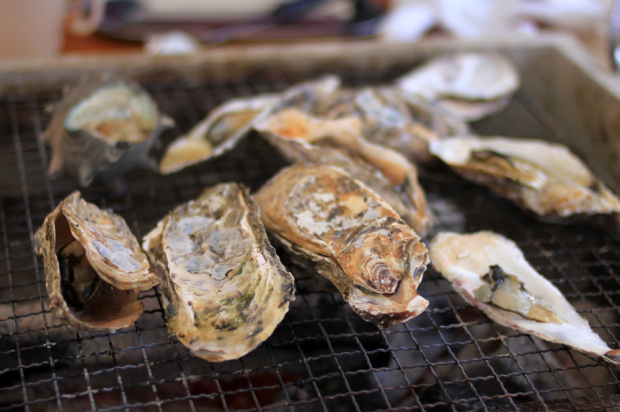 DIYな食べ放題スタイルで人気の 牡蠣小屋が東京・立川の 国営昭和記念公園にオープン!