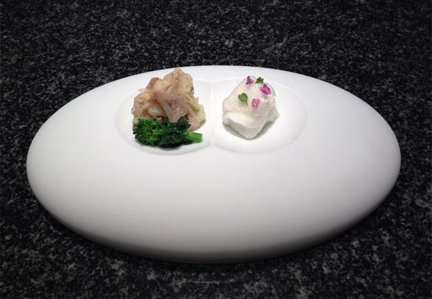 有田焼は料理と出会うことで食器として完成