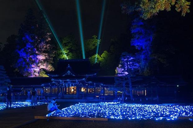 〈多賀町ライトアップ~神あかり〉 輝くのは住民手作りの 1万個の照明