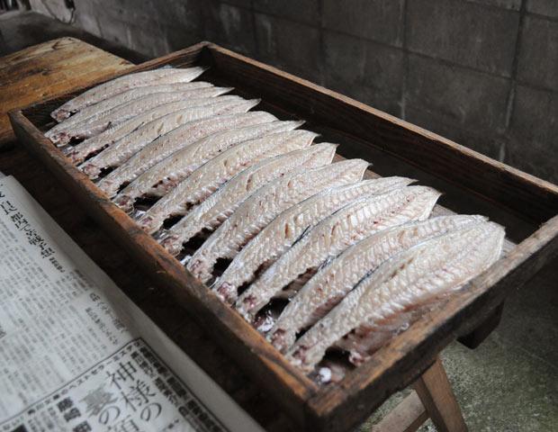 「ものすごい鯖」という名前をつけたのは、越田商店の鯖のファン。「うちの鯖を応援してくれる、〈tasobi〉という魚卸会社を運営している堀田幸作さんがつけてくれた名前です。さすがに自分ではつけられないよ(笑)」と越田さん。