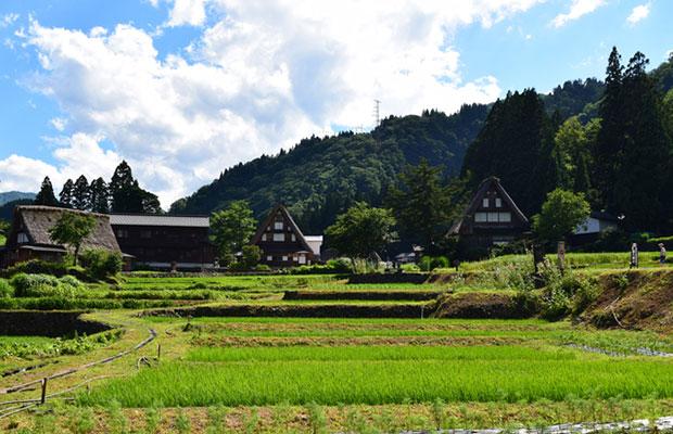 薪の音と同じ南砺市にある世界文化遺産の五箇山。