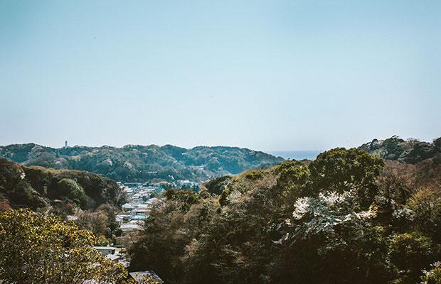 海に面し、三方を山に囲まれた鎌倉は、自然を身近に感じながら暮らすことができるまちだ。