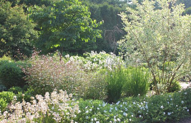 イコロの森ガーデン