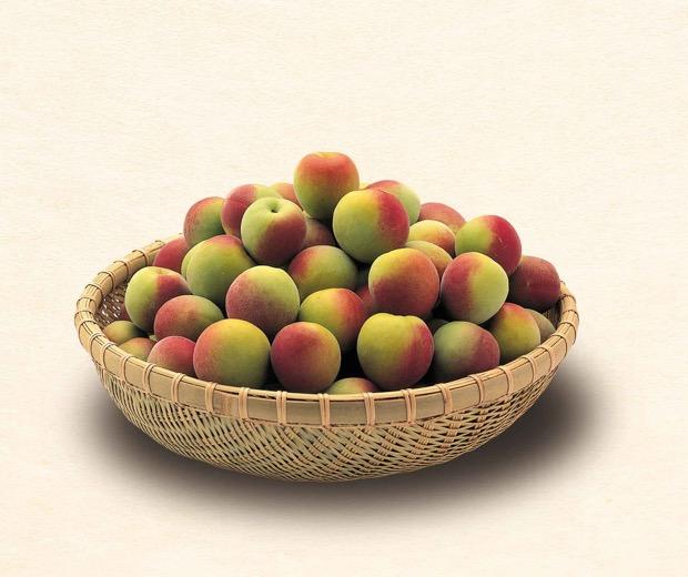 セットの梅は和歌山県産の特別栽培南高梅
