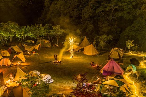 約20サイトが展開可能なキャンプサイト