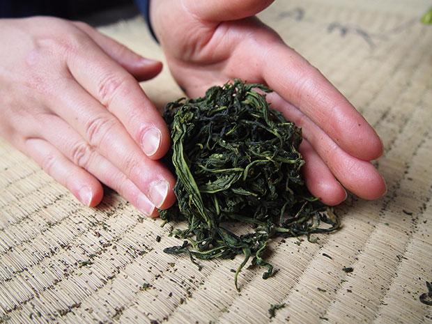 釜炒り茶のお茶葉は棒状ではなく、丸まっています。
