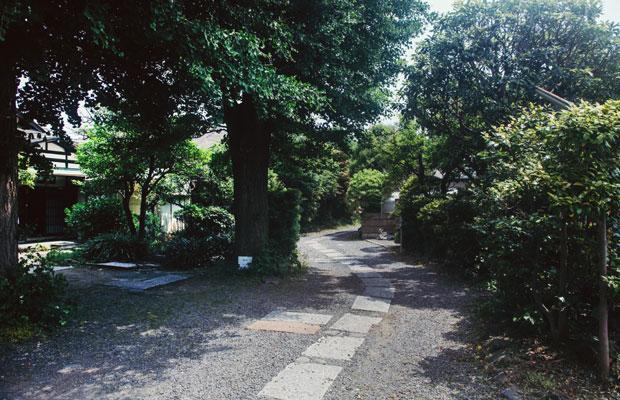 鎌倉でも屈指の観光エリア・長谷。〈蕾の家〉は、観光客で賑わう通りから一本入った路地に静かに佇んでいる。