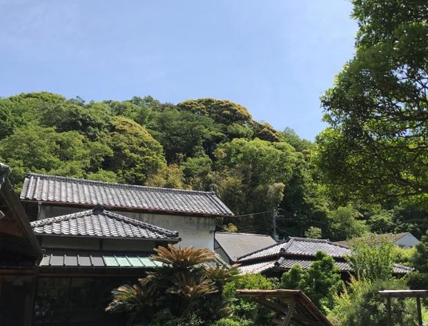 鎌倉 古今の外観