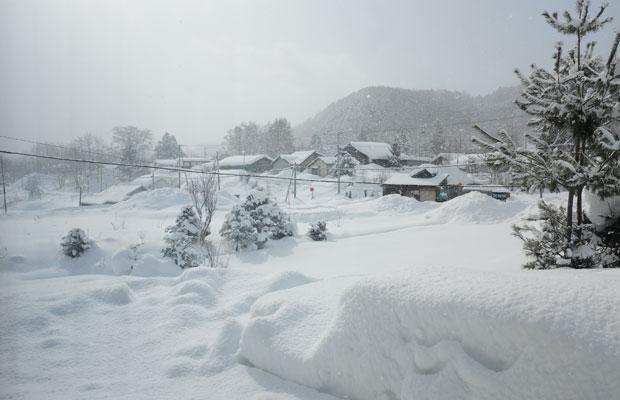 わたしの住む岩見沢は豪雪地帯。毎日のように雪が降り、白く薄暗い世界が広がっている。