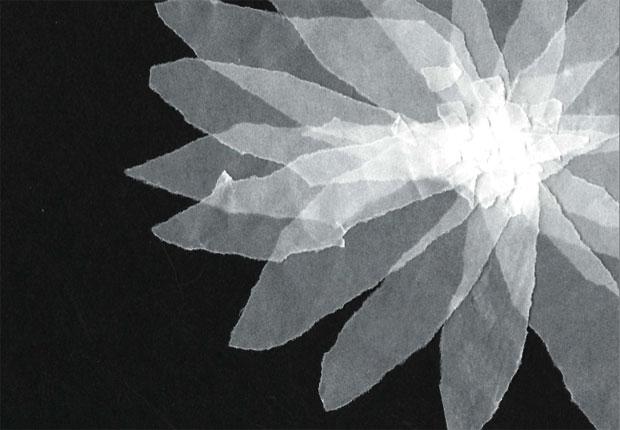 完成したのはモノトーンの絵本。雪の粒が、そのままふきのとうとなったような、そんなイメージを思い浮かべながら制作した。
