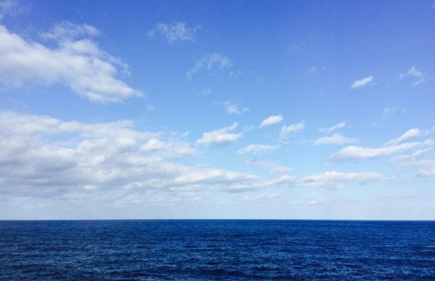 毎日見ている丹後の海の風景。bluetoのロゴはこの水平線をイメージしています。