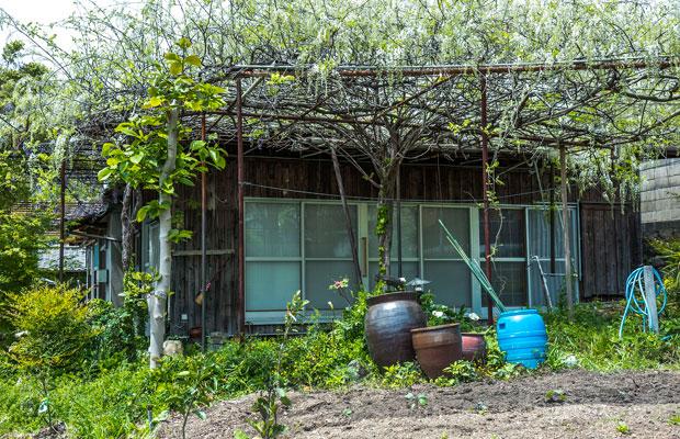 もう一軒の移住体験施設〈細井邸〉は庭も魅力的。7日以上3か月以内で利用可。7日間14000円(1棟あたり)。