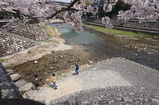 子どもの頃に音信川で遊んだ記憶が温泉街の人には皆あるという。