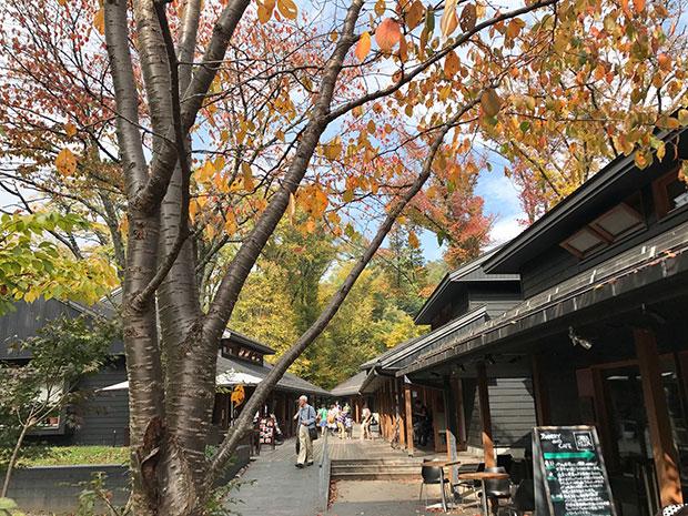 軽井沢の人気スポット、ハルニレテラス。四季の彩りも魅力。