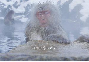 日本のすべてを遺す。まだ見ぬ日本と出会う圧巻の映像体験!映画『ピース・ …