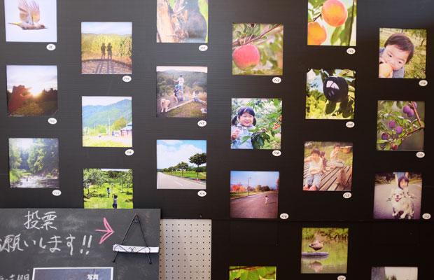 昨年のフォトコンテストは、岩見沢の毛陽地区にある〈ログホテル メープルロッジ〉で展示を行った。今年は札幌市資料館で開催する『みる・とーぶ展』で展示予定。