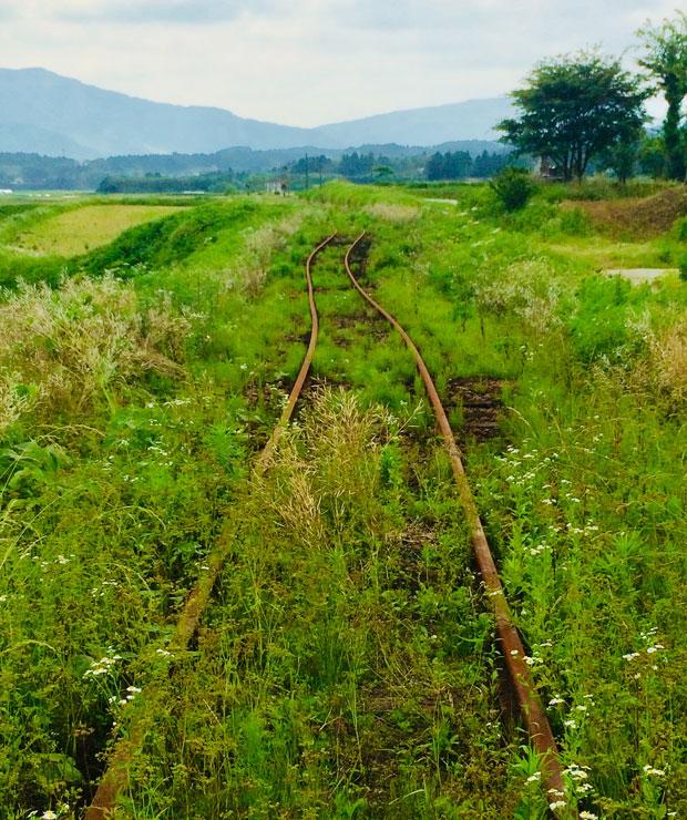 使われなくなった線路には草がおおい茂る。