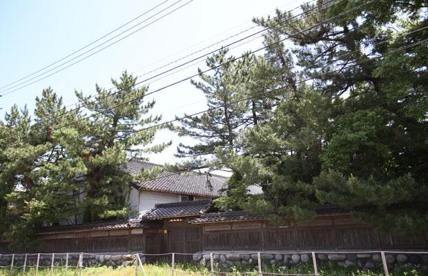 こちらも海運業で栄えた名家・馬場家。馬場はるさんは富山の教育に圧倒的な貢献を果たした。