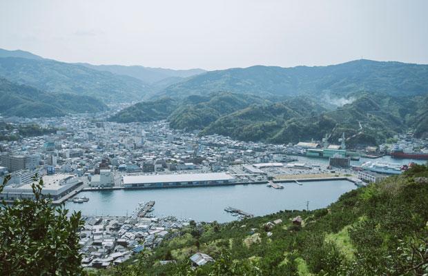 有数のみかん産地である八幡浜。みかんの山から八幡浜港を一望。