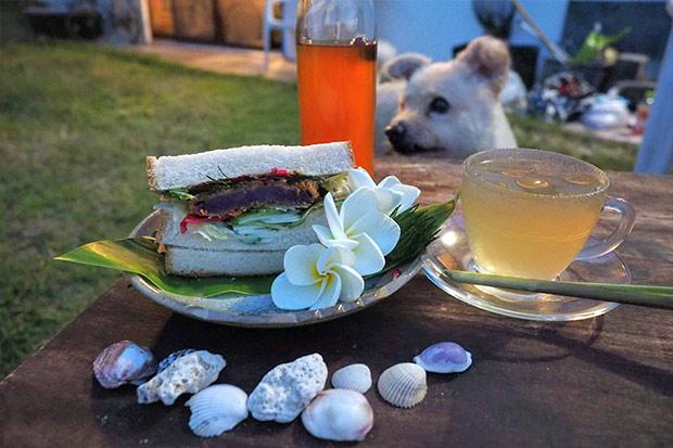 完成したのがこちら。多香美さんがいろんなハーブを漬け込んで作った酵素ジュース(梅酒みたいでおいしい)と、拾ってきた貝殻、そして庭に咲いていた南国の花プルメリアを添えて。お皿は太朗さんとこで買ったやつだ。