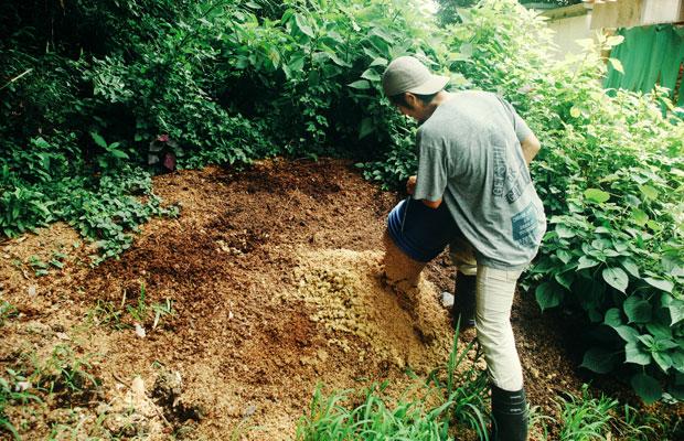 使用後の麦とホップは近所の造園屋に持ち込まれ、剪定材と混ぜ堆肥化し、地域に再循環されている。
