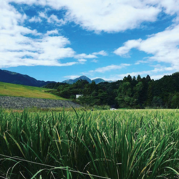 三重県三重郡菰野町の風景
