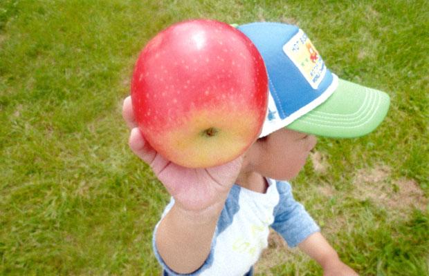 小さな子どもでも片手で簡単に持てるサイズ。