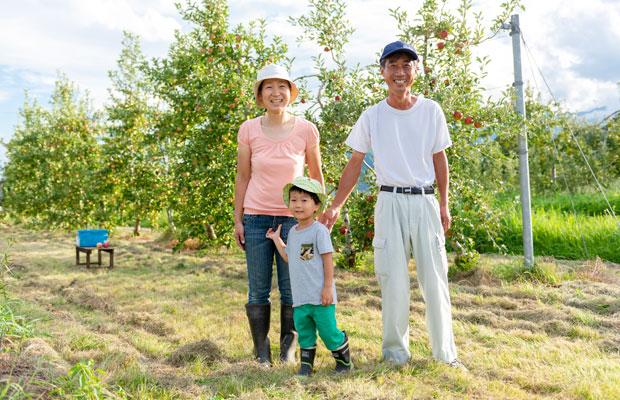 北アルプスの麓、大町市のりんご農家・堀田佳基さんは〈シナノピッコロ〉の生産者のひとり。