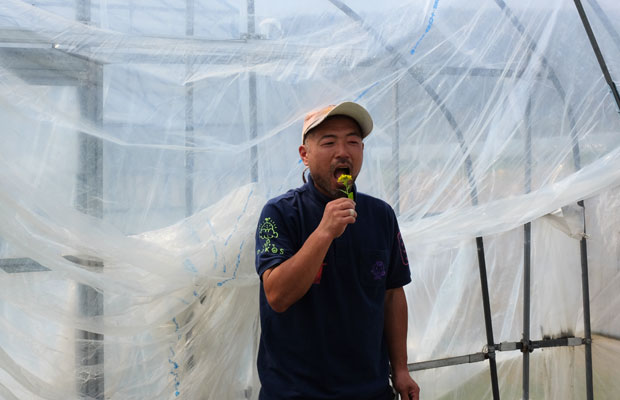 せたなの隣町、今金町の農家の5代目。ソガイさんは2000年に農園を受け継ぎ、〈シゼントトモニイキルコト〉を運営。自生している野菜の種類は、食べてみなければ判別するのが難しいことも。ひと口食べて「これはカブだと思います」とソガイさん。