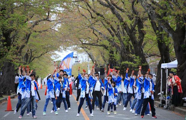 未来会議の仲間たちと参加した、8年ぶりに再開した「富岡町桜まつり」での、よさこいチーム「よさこい浜さkoi」。2列目中央が筆者。(2018年5月、撮影:霜村真康)