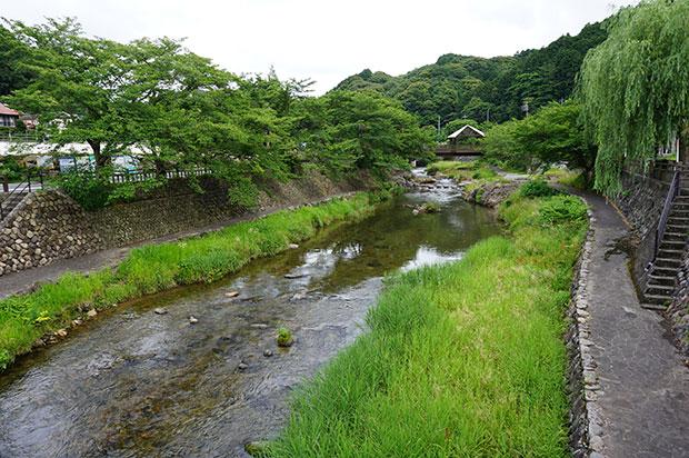 木々の緑に癒される夏の音信川。初夏にはホタルが舞う。