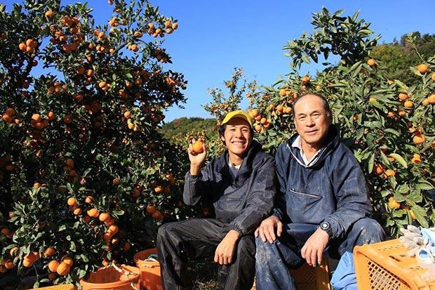 和歌山のみかん農家と、収穫に携わった援農者3。