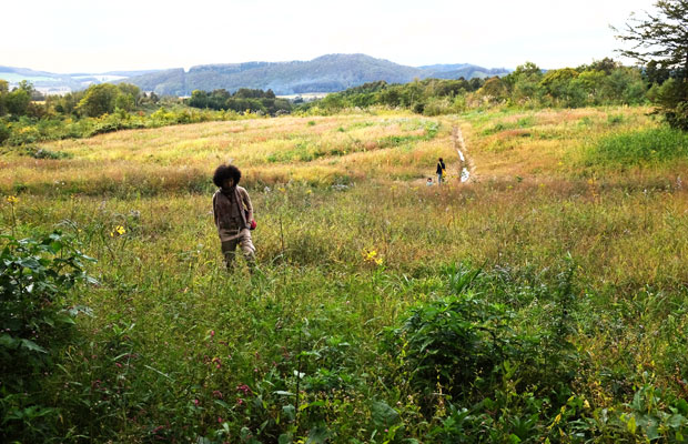 最後にわたしが一昨年に買った山を案内した。「何をしているんですか?」と稲垣さんに聞かれ「何もしていません(笑)」と答えると「いいですね~」と笑ってくれた。