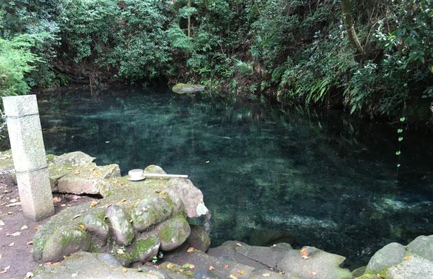 青さの戻った塩井社水源。