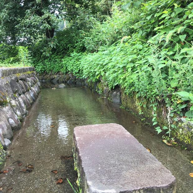 水路へもきれいな水が戻りました。