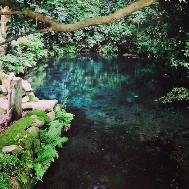 青く澄んだきれいな水。