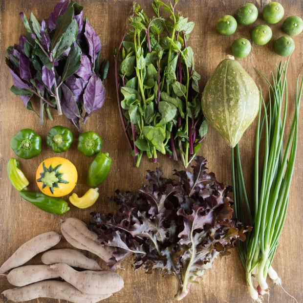 10月前半のHOMEMAKERS旬野菜セット。