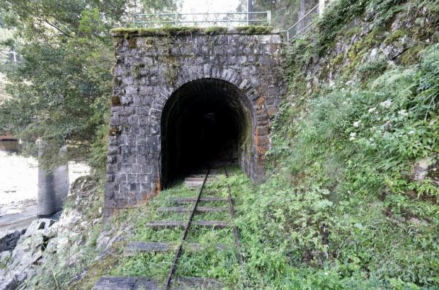 旧魚梁瀬森林鉄道 五味隧道。ジブリの映画に出てきそうな風景。