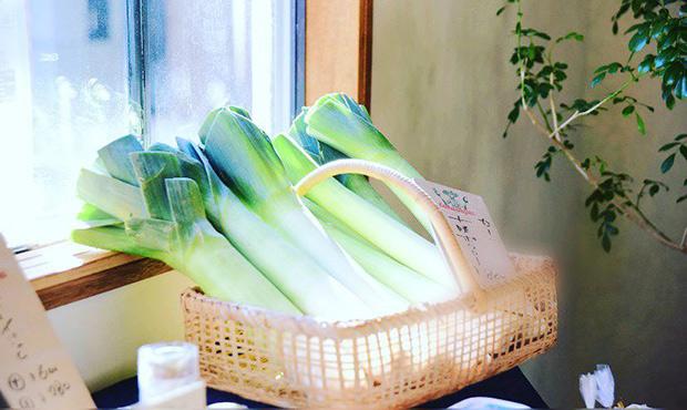 フランスでよく食される西洋野菜ポワロー(リーキ、ポロねぎ)
