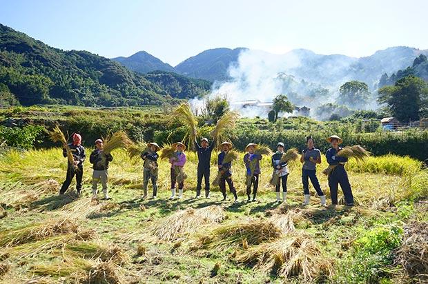 稲刈りの風景4