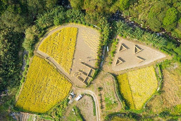 ドローン撮影した我が家の田んぼ。まるでナスカの地上絵のよう!?