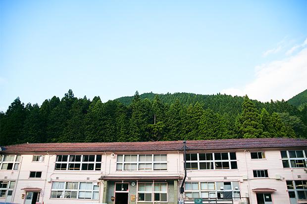 校舎の背後に迫る裏山では、山椒がとれる。うなぎ業者にとってはこれ以上ない贅沢。