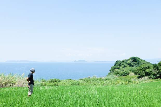 俵ヶ浦半島の草原