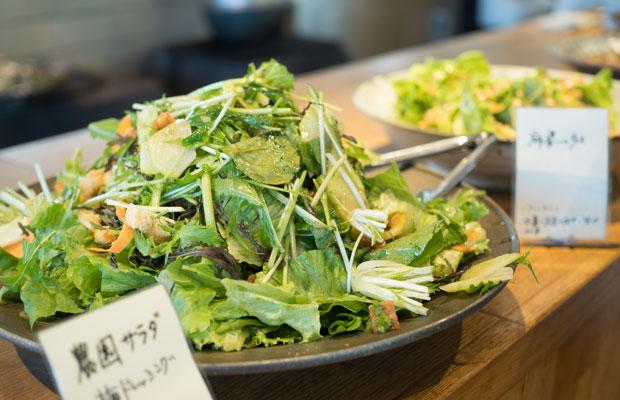 つなぐ農園で採れた野菜のサラダ。