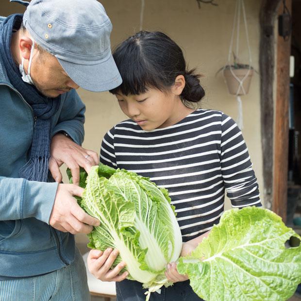 小豆島に移住してきた当時は5歳だったいろは(娘)も成長し、学校が休みのときは野菜の出荷作業を手伝ってくれます。