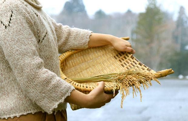 粘りがあって強靱な根曲がり竹の特性を生かし、箕(み)や魚籠(びく)など、自然の中や台所などで使うさまざまな道具がつくられ、重宝されてきました。
